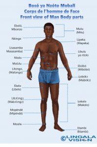 Male_front-lingala-watermark.jpg